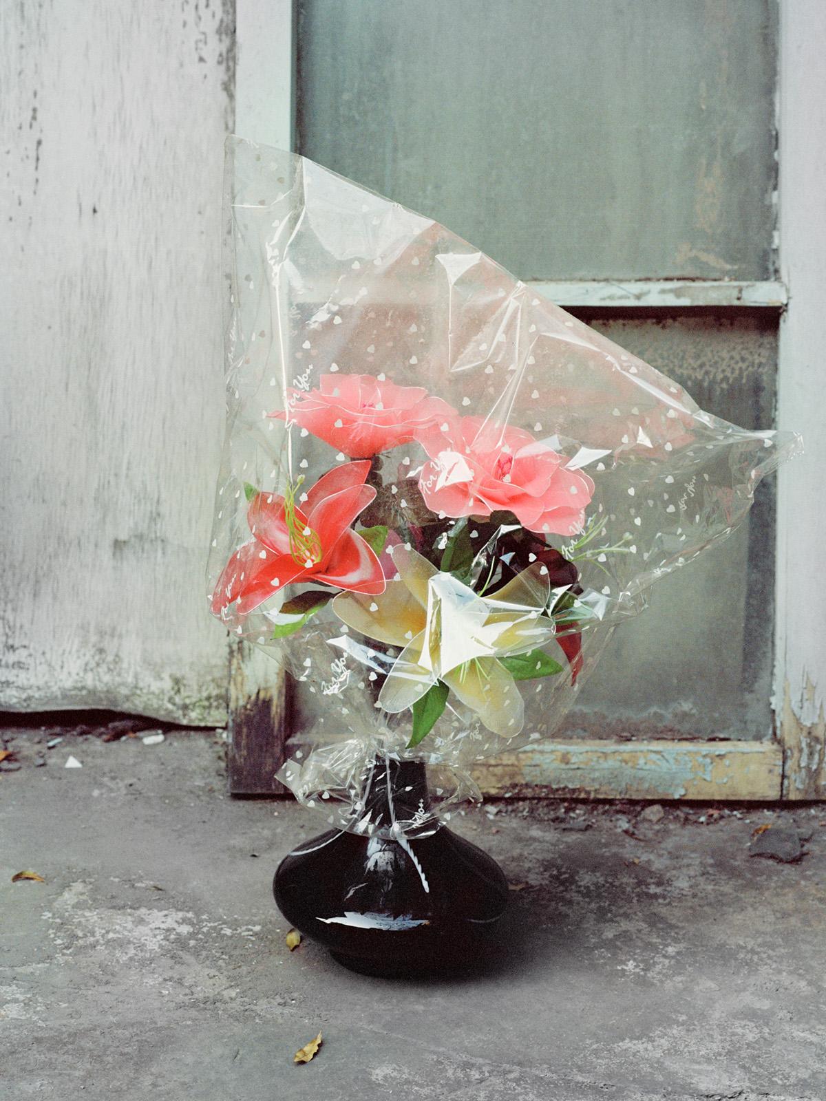 FF2019-Lu_YL-image1