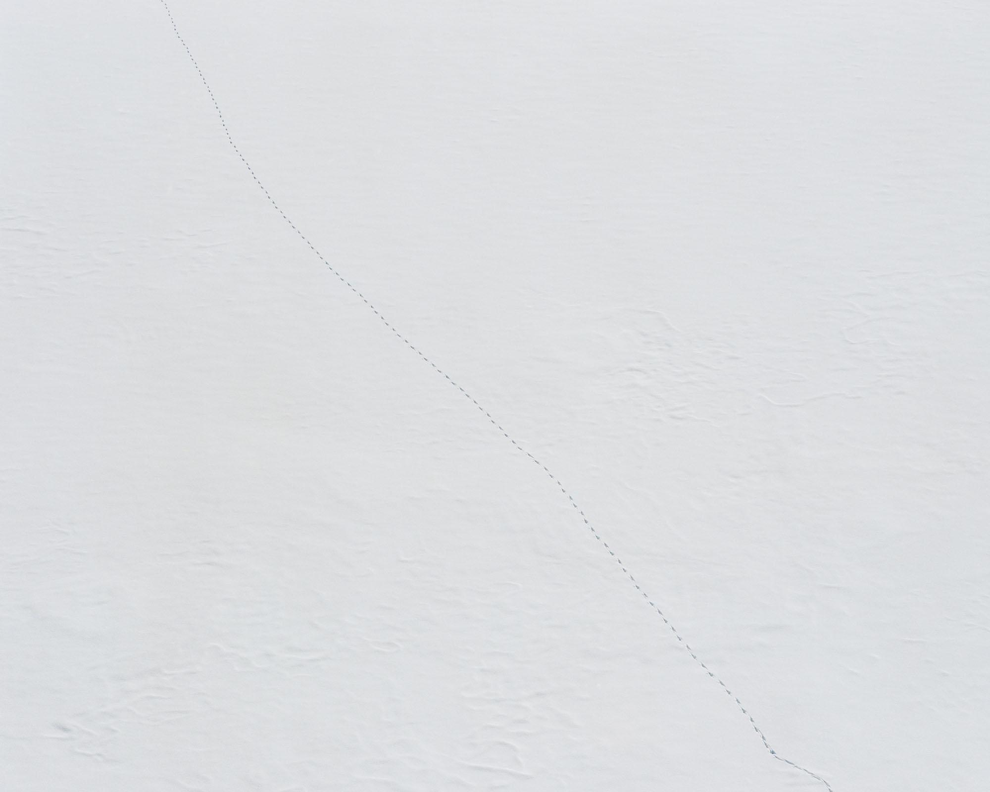 FF2019-white_n-image7